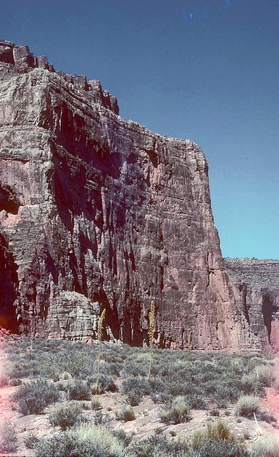 5-27-redwall_cliff_ig_adj_trim