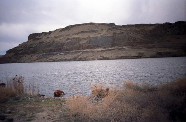 25-reservoir_ig_adj