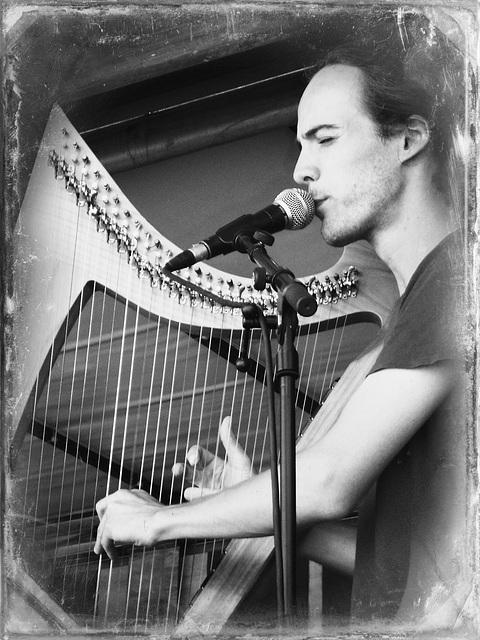 harpe celtique,