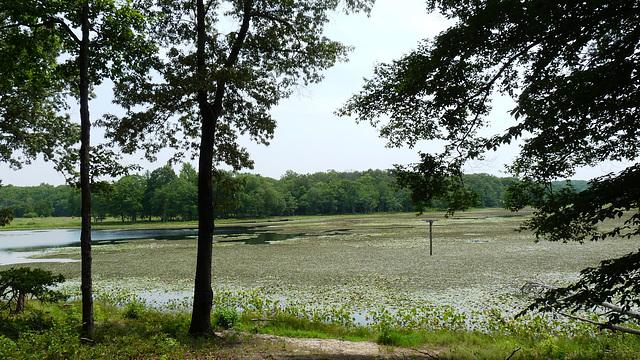 Cash Lake