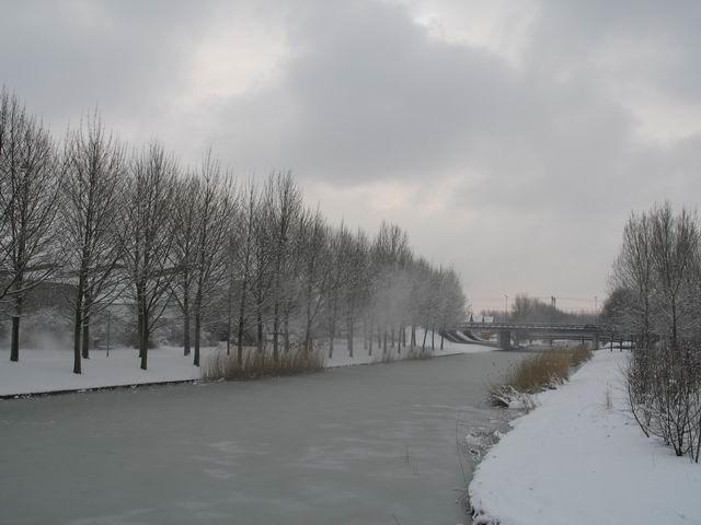 Icewind, The Netherlands