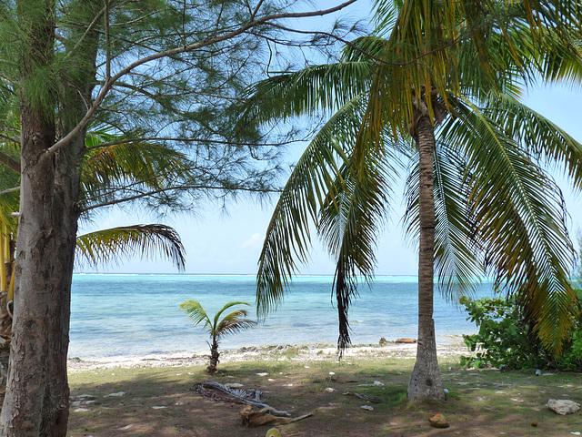 Heritage Beach