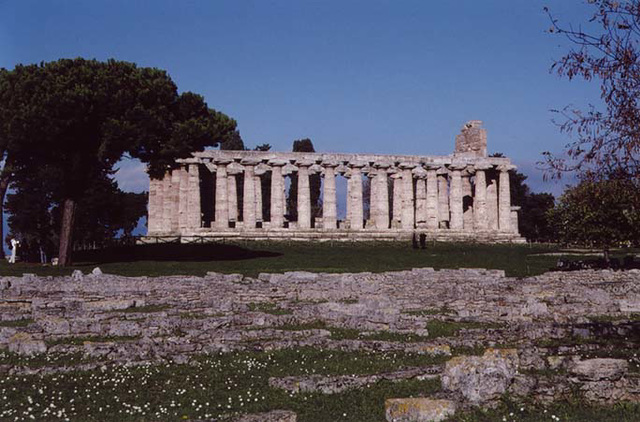 Temple at Paestum, 2003