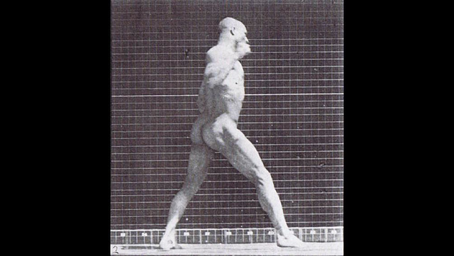 Victorian Muscle Man by Muybridge