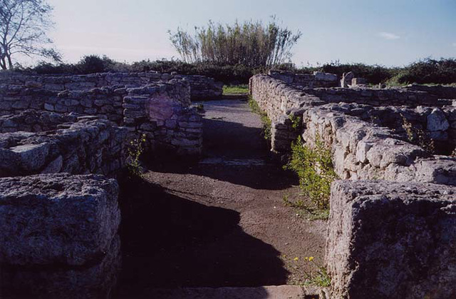 Remains of Roman Houses in Paestum, 2003