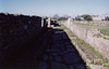 A Roman Street in Paestum, 2003