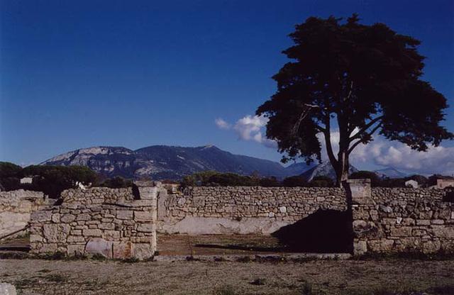 ImperialCultSanctuaryNForumPaestum2003
