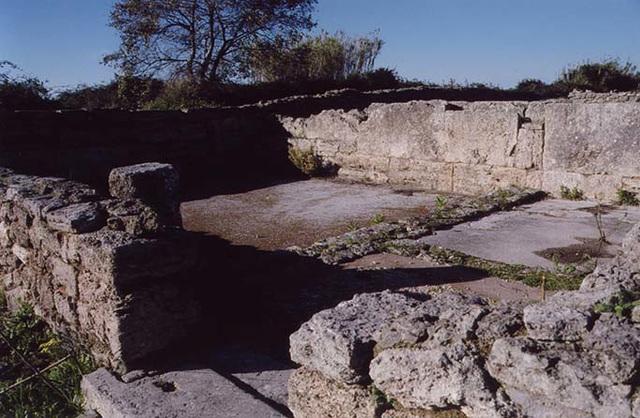 ImperialCultSanctuaryNForum2Paestum2003