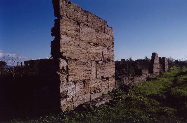 WallPaestum2003