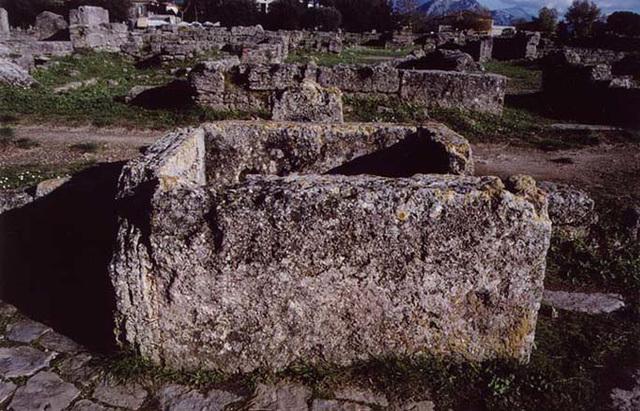 WellPaestum2003