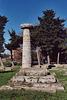 Column in Paestum, 2003
