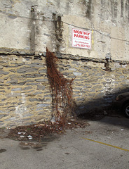 Heavy vine- and mortarwork for your parking.