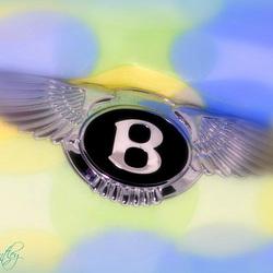 Flying B