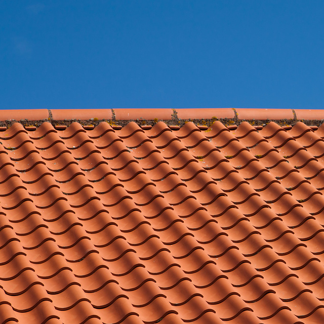 Roof tiles, St Andrews