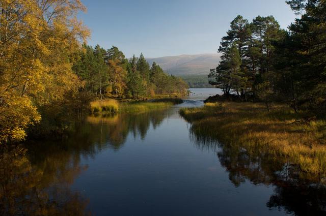 Loch Morlich Autmn, Cairngorm National Park, Glenmore, Aviemore, Scottland Highlands