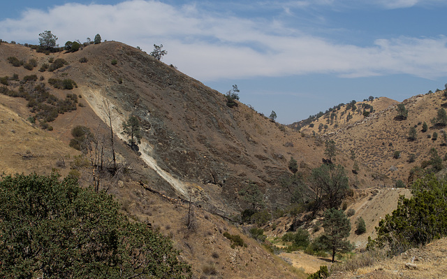 Stanislaus Del Puerto Canyon Rd (0578)