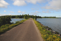 Pine Island Causeway