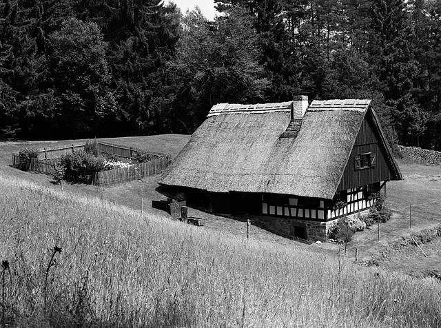 Black Forest idyll