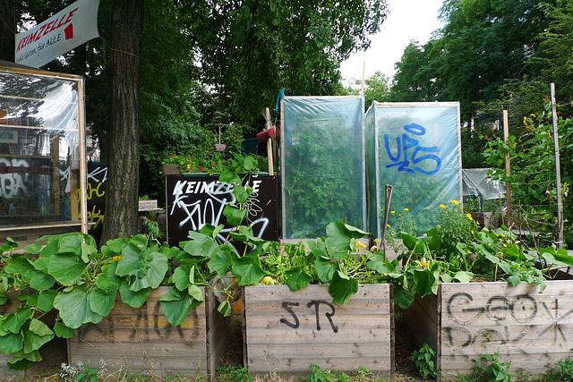 stadtgarten-1160656
