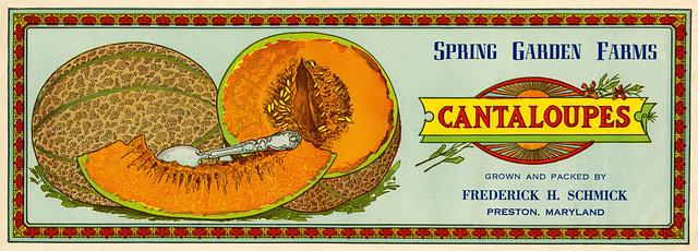 Spring Garden Farms Cantaloupes Label