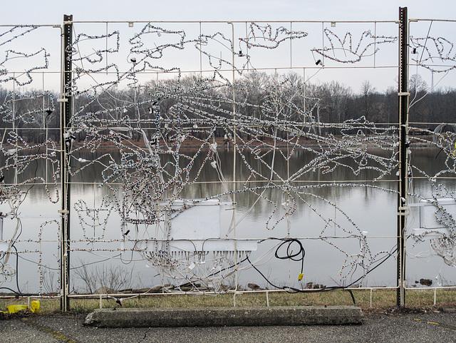 Ohio River tangle of xmaslights.