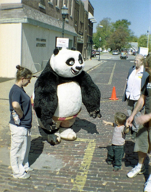 Touch The Panda