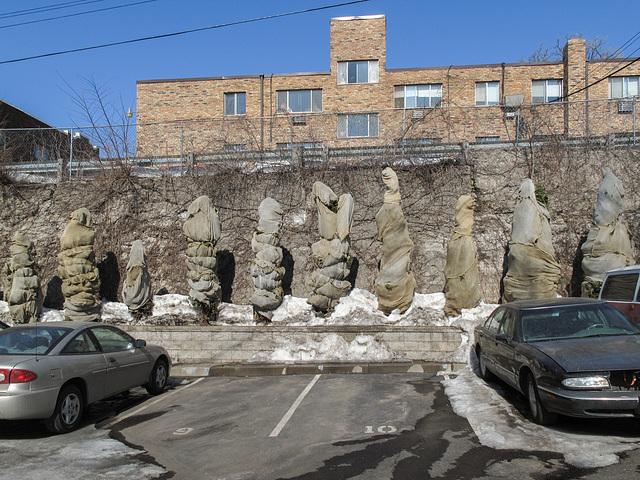 Standing sunbleached dogturd guardian figures of West Franklin Avenue, ca. 2010.