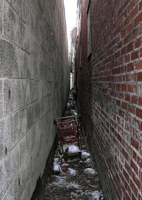 In a tidy & clean & well-cared-for city I'd be able to get where I'm going without needing to scramble overtop of old abandoned tipped-over shopping buggies.