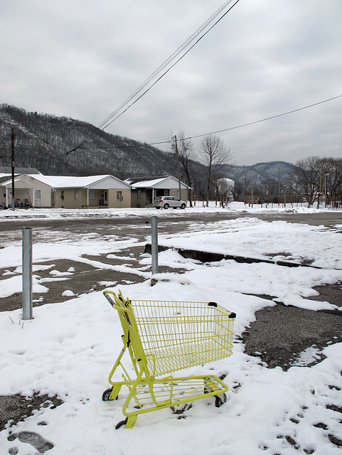 """Famously and unforgettably colourful shopping buggies of """"Dollar General"""" discount chainstore.  This one is set in a rugged West Virginia landscape."""