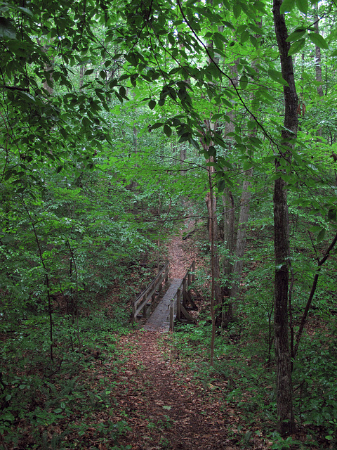 Nature preserve self-guided nature trail infrastructure to love, in Ohio.