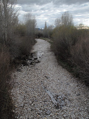 "Minimal wateriness of Eastern Idaho's gravelly old ""Teton Creek"" so-called creek."