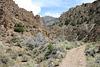 Horse Creek canyon