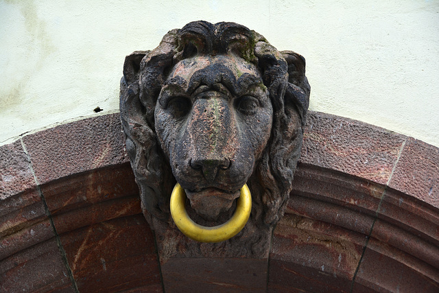 Leipzig 2013 – Lion with ring