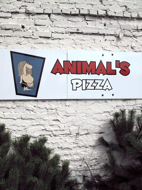 Welcome to animals pizza.