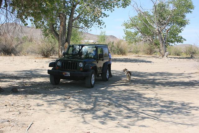 Jill & the Jeep