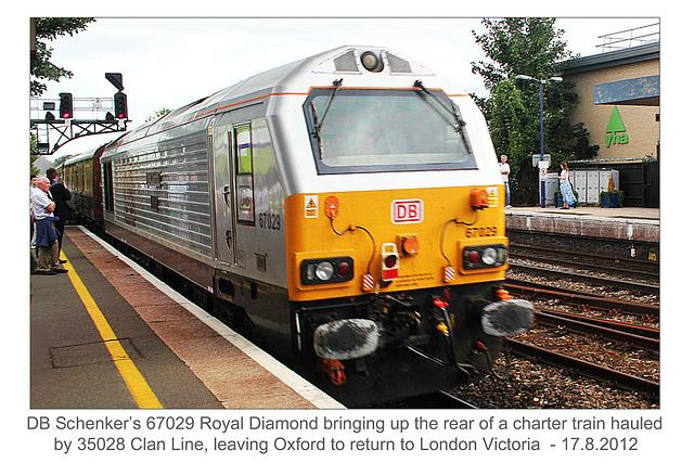 67029 Royal Diamond - Oxford - 17.8.2012