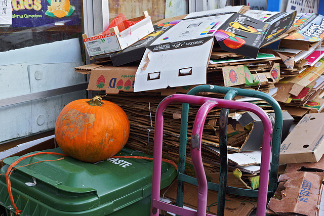 Still Life With Garbage – Augusta Avenue, Toronto, Ontario