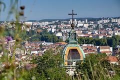 BESANCON:Le toit de l'Eglise St Jean depuis la citadelle.