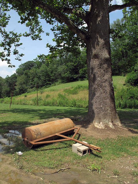 Layin down my heavy old rusty old rolling flattener-smoother, under a tree, during my break.