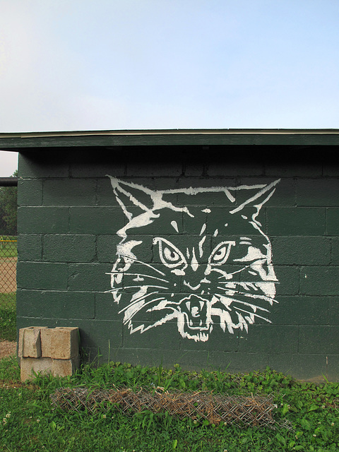 """""""Paden City Wildcats"""" will eat the children of the other towns in the region."""