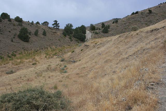 Fairview Peak Fault Scarp