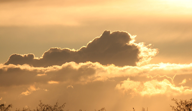 Clouds and late afternoon light