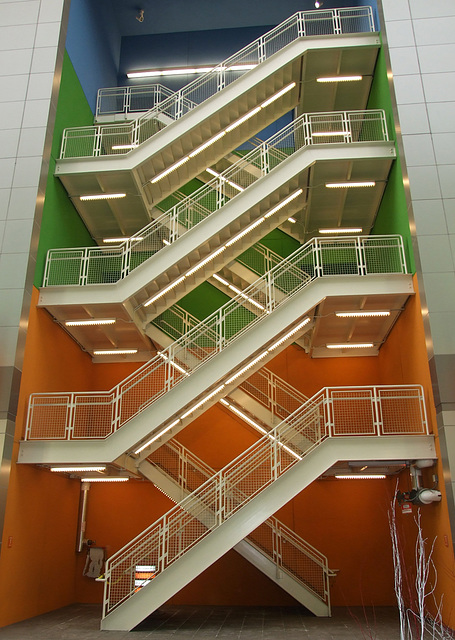 Stairwell in Rego Center, January 2011
