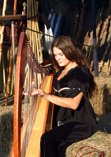 Harpist at the Fort Tryon Park Medieval Festival, Sept. 2007