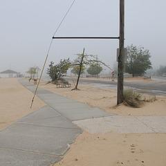 An arbor straddles a sidewalk.  This is a threeway.