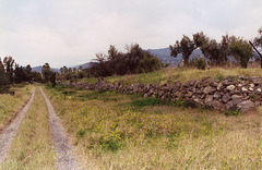 The Remains of the First Ancient Greek Colony in Sicily: Naxos, March 2005