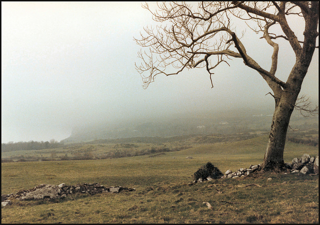 mist over Knocknarea