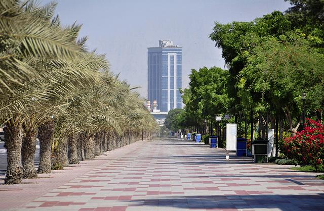Al Khor Road - Zoom