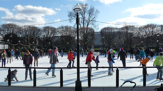 Sculpture Garden Ice Rink