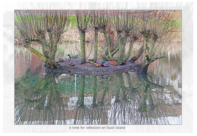 Duck Island reflections 2011 more burn